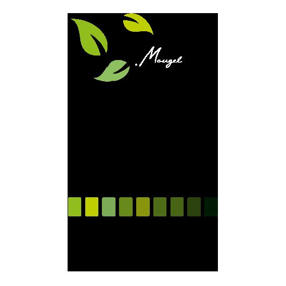 logo-D-mougel-paysage2